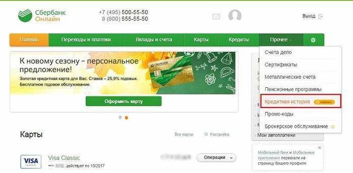 Инструкция, как проверить кредитную историю через Сбербанк Онлайн